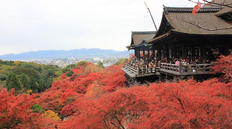 วัดคิโยมิสึ หรือ วัดน้ำใส : ใบไม้เปลี่ยนสีที่เกียวโต