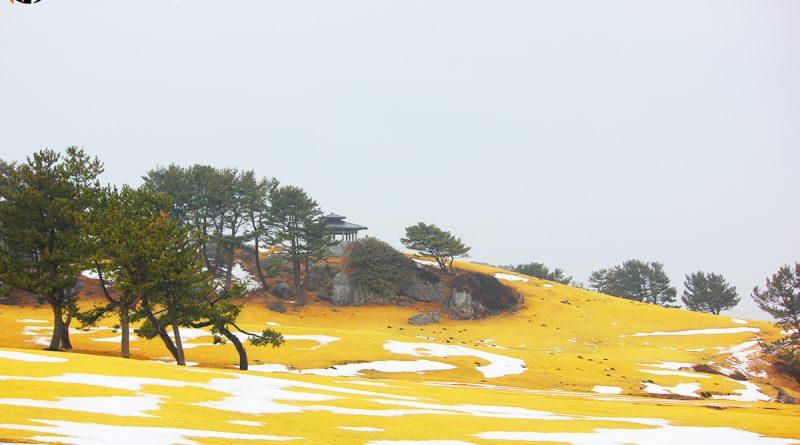 จุดชมวิวพาโนรามา Tanesashi kaigan hashikamidake prefectural natural park