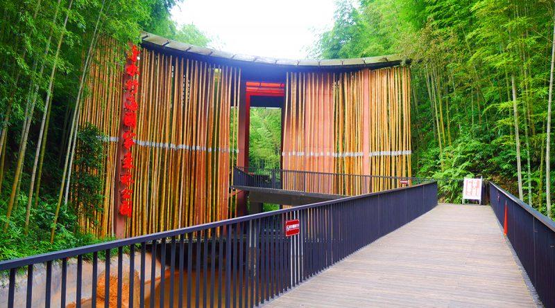 ทางเข้ายังทำด้วยไผ่ ที่ เที่ยวง่ายด้วย QR Code ที่ อุทยานทะเลไผ่ชื่อสุ่ย (Chishui Bamboo Sea National Forest Park)