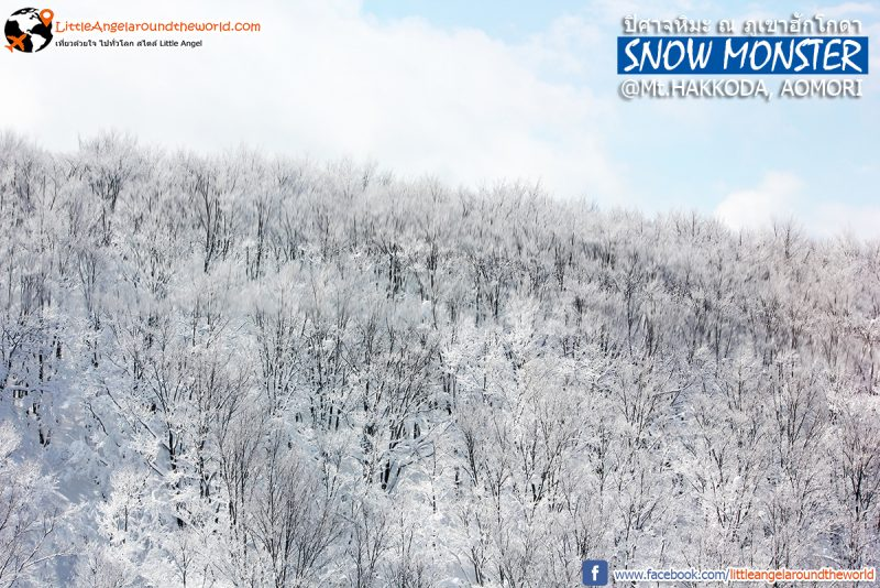 หิมะปกคลุมทั้งภูเขา สวยดั่งภาพวาด เกินบรรยาย วิวจาก Ropeway ที่ Mt.Hakkoda : Snow Monsters at Mt.Hakkoda