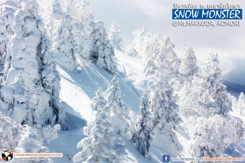 ปิศาจหิมะหรือสวรรค์ สวยเกินบรรยาย วิวจาก Ropeway ที่ Mt.Hakkoda : Snow Monsters at Mt.Hakkoda