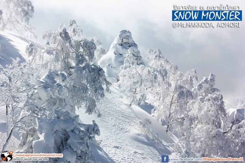 ภูเขาปิศาจหิมะหรือสวรรค์ สวยเกินบรรยาย วิวจาก Ropeway ที่ Mt.Hakkoda : Snow Monsters at Mt.Hakkoda