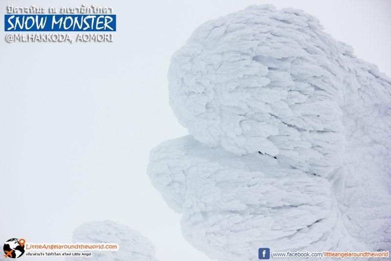 ปิศาจหิมะ หรือ Snow Monster ความสวยที่ธรรมชาติสร้าง ที่ Mt.Hakkoda : Snow Monsters at Mt.Hakkoda