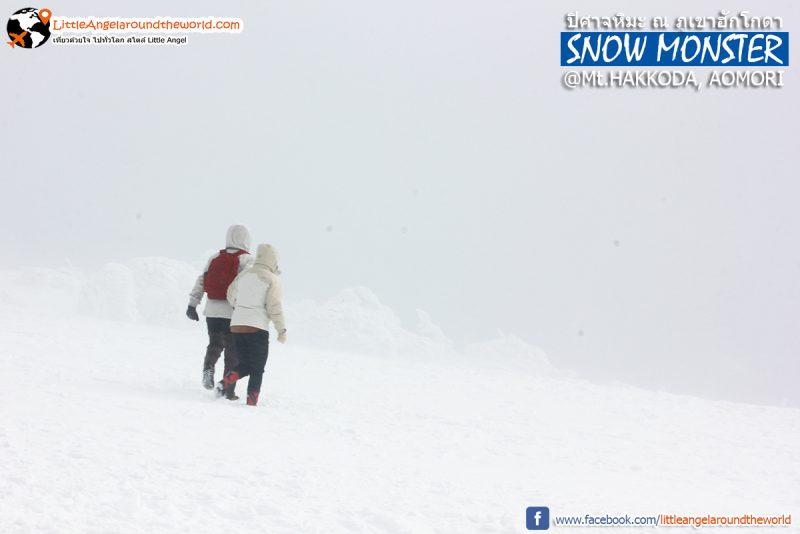 ชอบภาพนี้ จูงมือกันท่ามกลางหิมะขาว บน Mt.Hakkoda : Snow Monsters at Mt.Hakkoda
