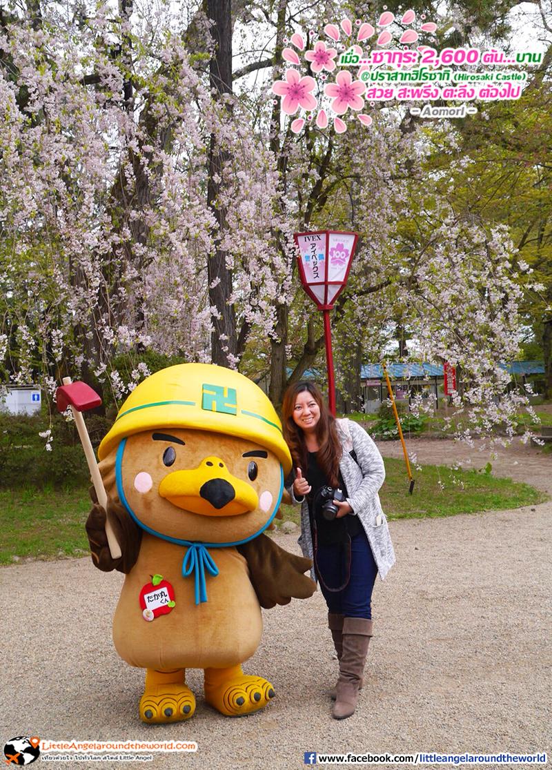 Mascot สุดน่ารักของเมืองนี้ : เที่ยวอาโอโมริ ซากุระกว่า 2,600 ต้น ที่ปราสาทฮิโรซากิ (Hirosaki Castle)