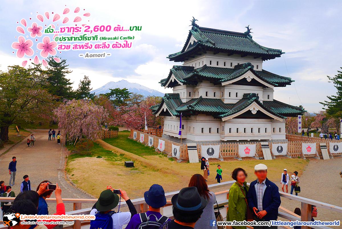 จุดชมวิวปราสาท : เที่ยวอาโอโมริ ซากุระกว่า 2,600 ต้น ที่ปราสาทฮิโรซากิ (Hirosaki Castle)