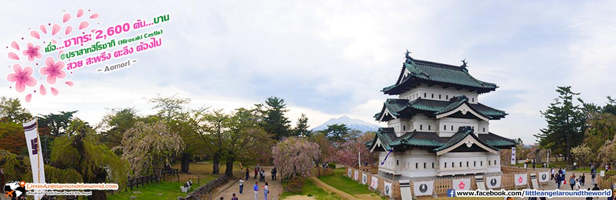 วิว พาโนรามา ได้บรรยากาศมากๆ : เที่ยวอาโอโมริ ซากุระกว่า 2,600 ต้น ที่ปราสาทฮิโรซากิ (Hirosaki Castle)