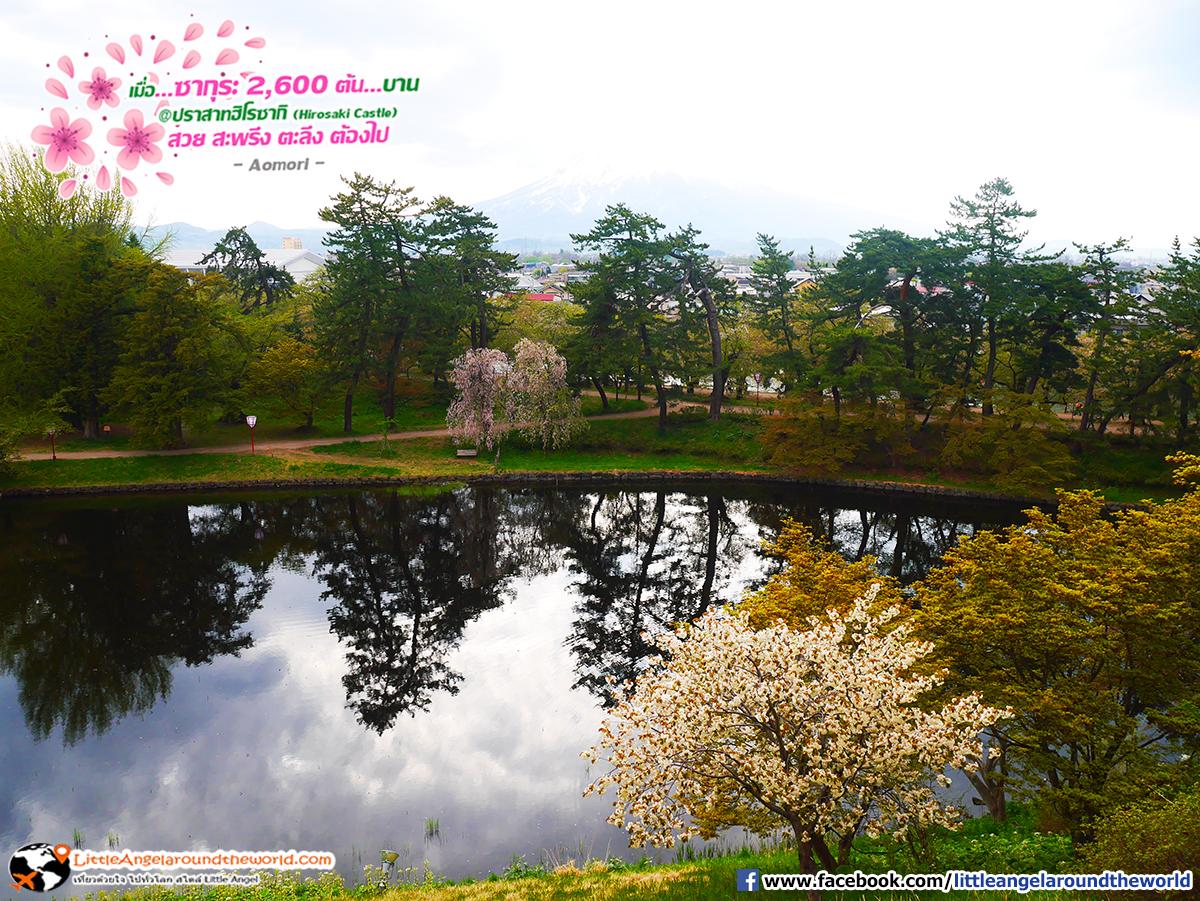 วิวรอบปราสาทฮิโรซากิ : เที่ยวอาโอโมริ ซากุระกว่า 2,600 ต้น ที่ปราสาทฮิโรซากิ (Hirosaki Castle)
