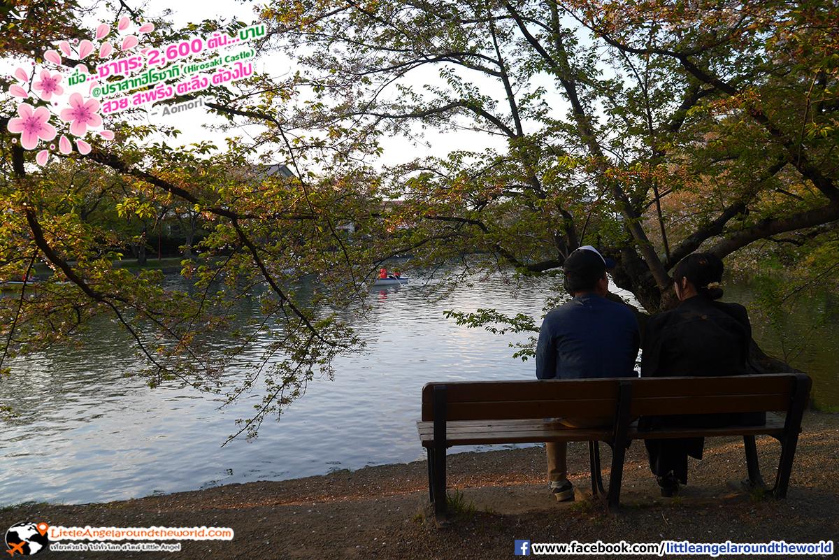 ชอบรูปนี้เป็นพิเศา โรแมนติกจัง : เที่ยวอาโอโมริ ซากุระกว่า 2,600 ต้น ที่ปราสาทฮิโรซากิ (Hirosaki Castle)