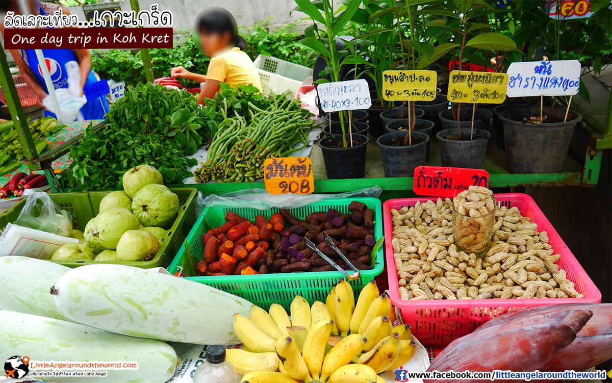 ผักสด ผลไม้สด เก็บจากสวน นำมาขายสร้างรายได้ : เที่ยวเกาะเกร็ด (One day trip in Koh Kret)