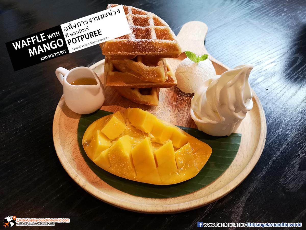 เมนูต้อนรับเทศกาลมะม่วง Waffle with Mango and Softserve : Potpure'e (พอทพิวเร่) ร้านอาหารไทย อินเตอร์ ที่ เซ็นทรัล พระรามเก้า ชั้น 7