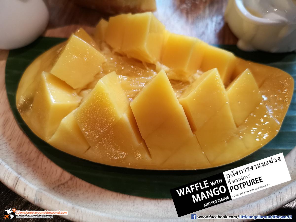 มะม่วงสุกหั่นสวยงาม : Waffle with Mango and Softserve : Potpure'e (พอทพิวเร่) ร้านอาหารไทย อินเตอร์ ที่ เซ็นทรัล พระรามเก้า ชั้น 7