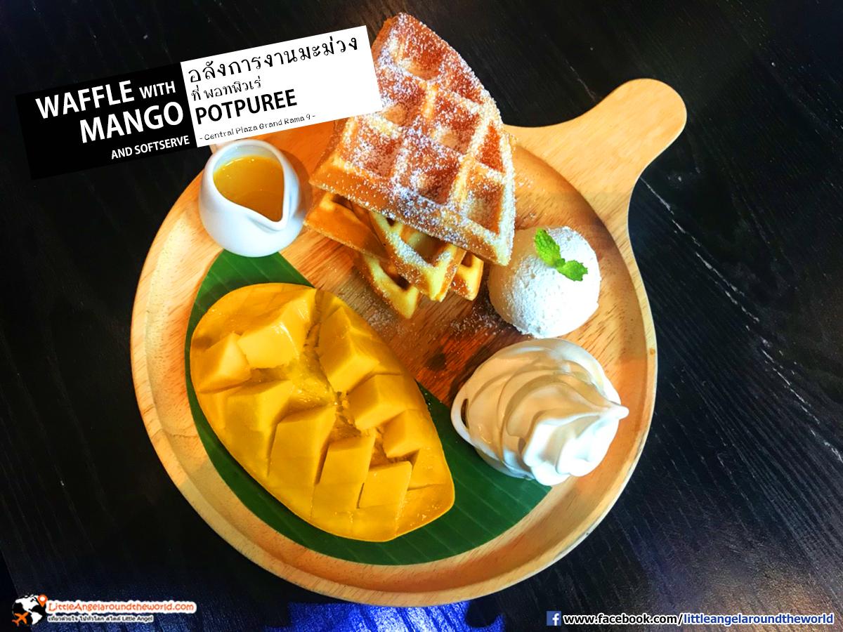 Waffle with Mango and Softserve : Potpure'e (พอทพิวเร่) ร้านอาหารไทย อินเตอร์ ที่ เซ็นทรัล พระรามเก้า ชั้น 7